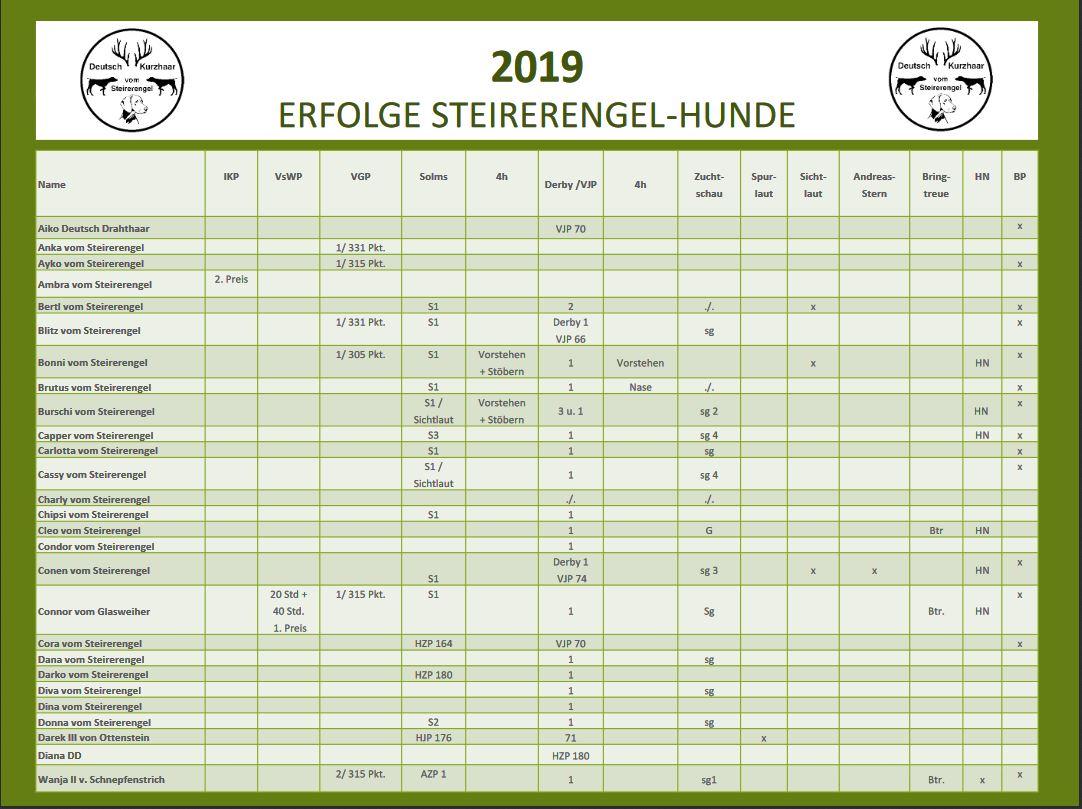 Erfolge-2019-Steirer