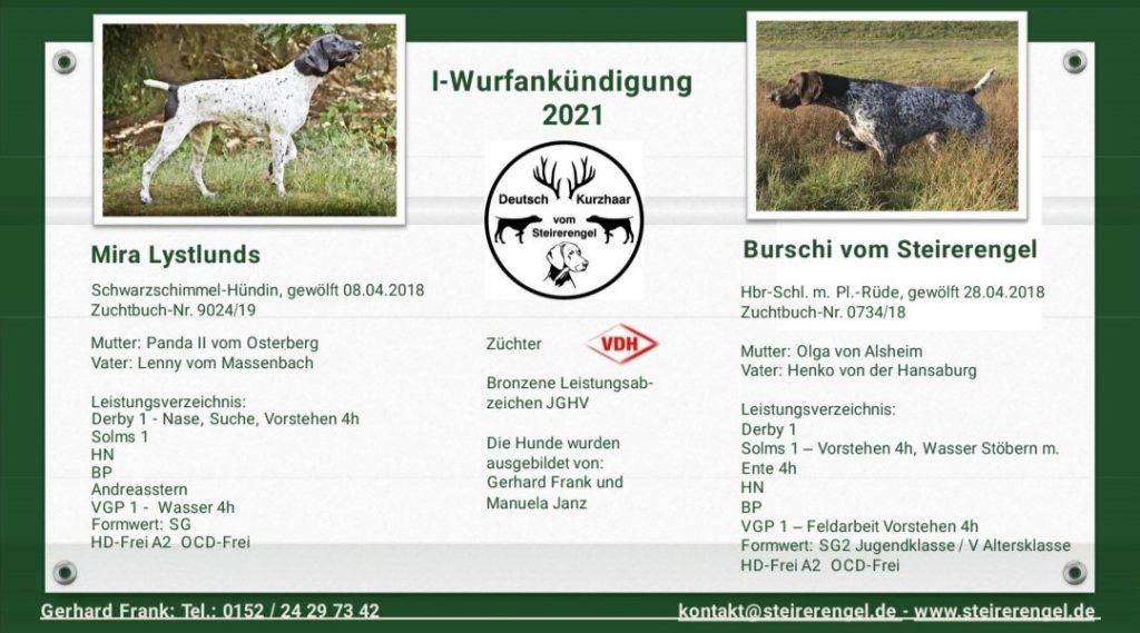 Wurfankündigung-Mira-Lystlunds-und-Burschi-vom-Steirerengel